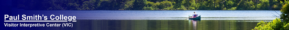 Adirondack Habitats: Fisherman on Black Pond (10 June 2015)