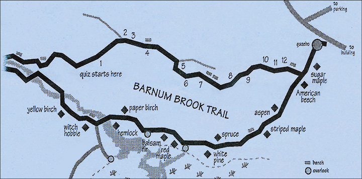 Paul Smiths VIC -- Map of Trees along the Barnum Brook Trail at the Paul Smiths VIC