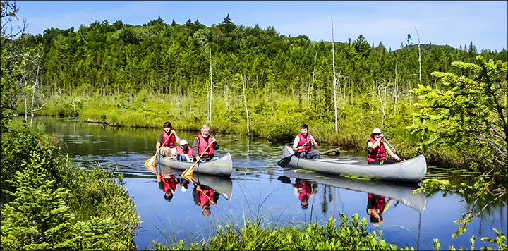 The VIC offers Interpretive Canoe Paddles Wednesdays, Saturdays, and Sundays at 10:00 AM.  Guided Canoe Trip on Barnum Bog (16 July 2015)