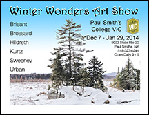 Winter Wonders Art Show Flyer